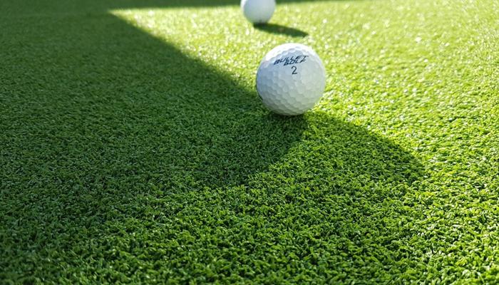 Các loại cỏ sân golf phổ biến tại Việt Nam