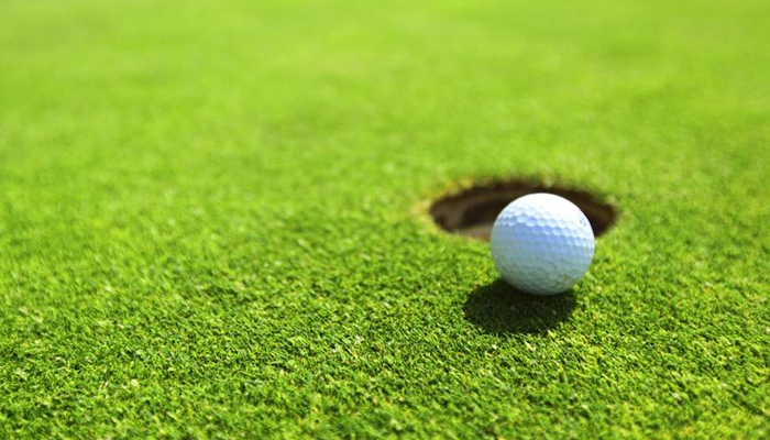 Tổng hợp các loại cỏ sân golf phổ biến nhất tại Việt Nam hiện nay